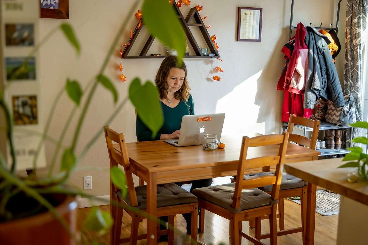 CEO of Well Clinic SF, Maya Johansson works at home in Sebastopol, Calif. on November 25th, 2020.