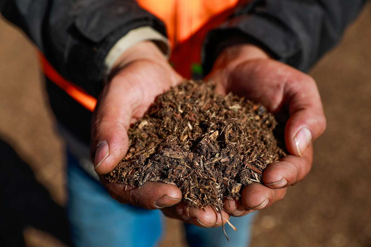 Fabian Arreola, store manager at Vision Recycling in Livermore, shows off a handful of fresh mulch in November.