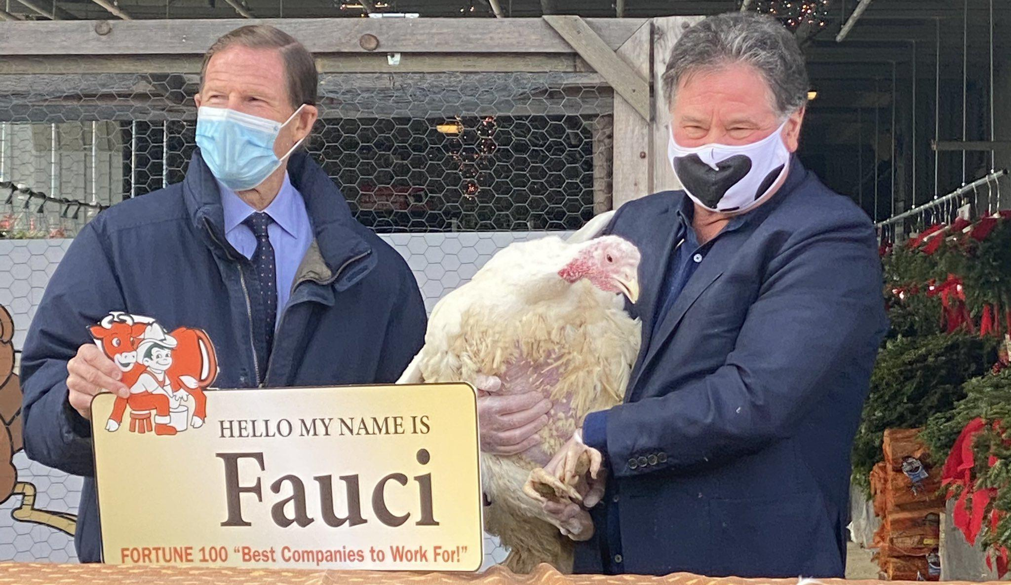 Blumenthal pardons turkey named after Fauci