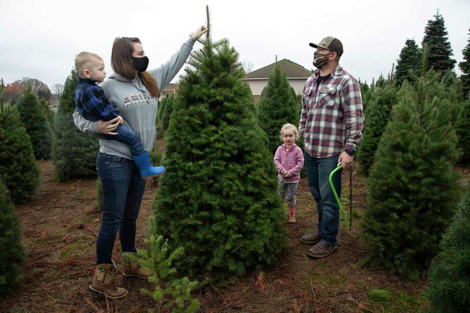 Many turn to real Christmas trees as bright spot amid virus - Westport News