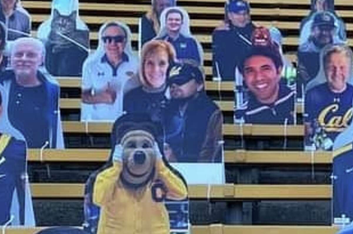 Cardboard cutouts at the 2020 Big Game between Cal and Stanford, including an image of Leonardo DiCaprio in a Cal hat.