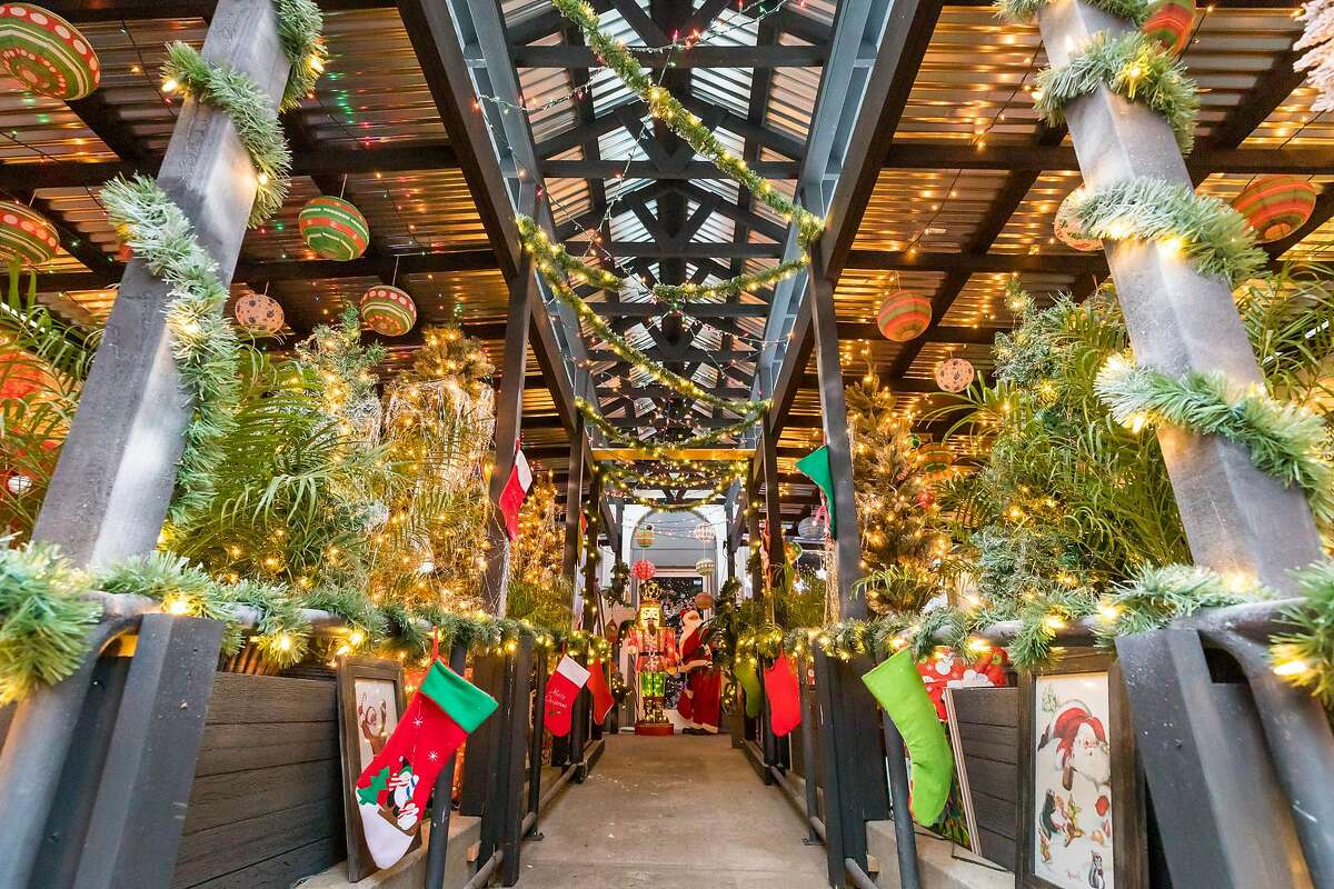 Pacific Cocktail Haven has set up its annual