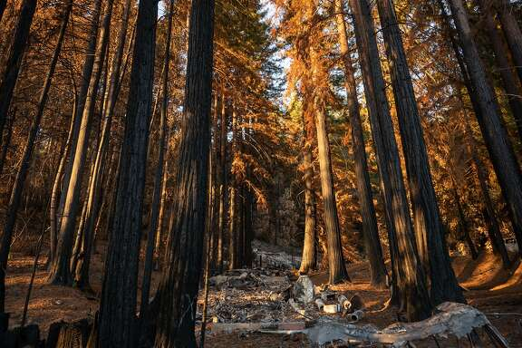 When the rain comes, the debris left behind by the fire will flush down the mountainsides.