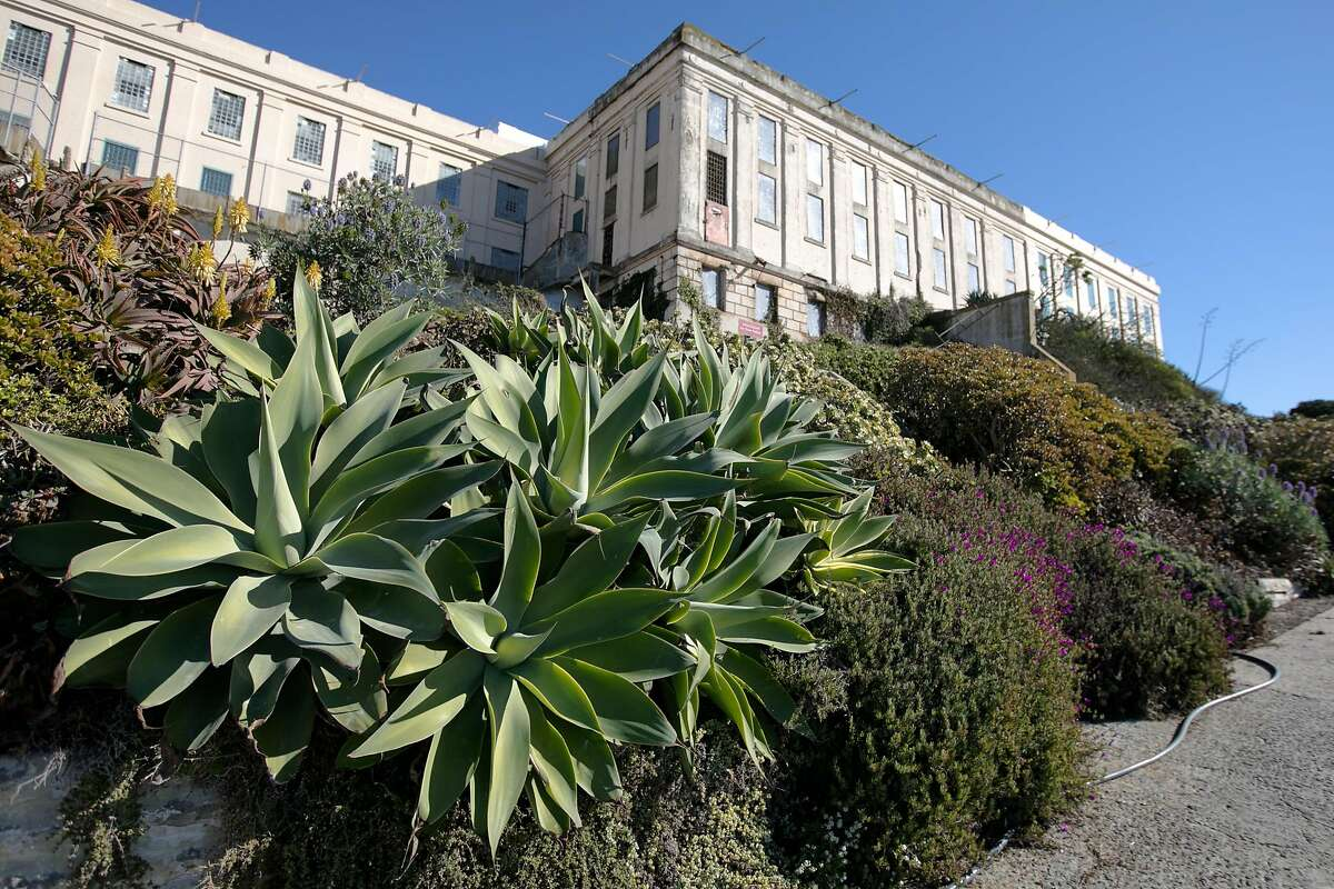Flowers and plants adorn a garden along a pathway on Alcatraz Island in San Francisco on Nov. 23, 2020. For the past 17 years, the National Park Service and Golden Gate National Parks Conservancy have been uncovering and rehabilitating many gardens on the island that were created and maintained during its time as a military base and later a prison.