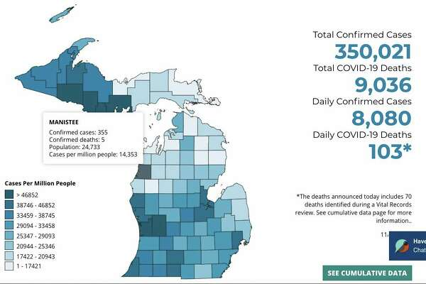 Manistee County has had 355 cases of COVID-19, according to the Michigan Department of Health and Human Services' data. (MDHHS graphic)