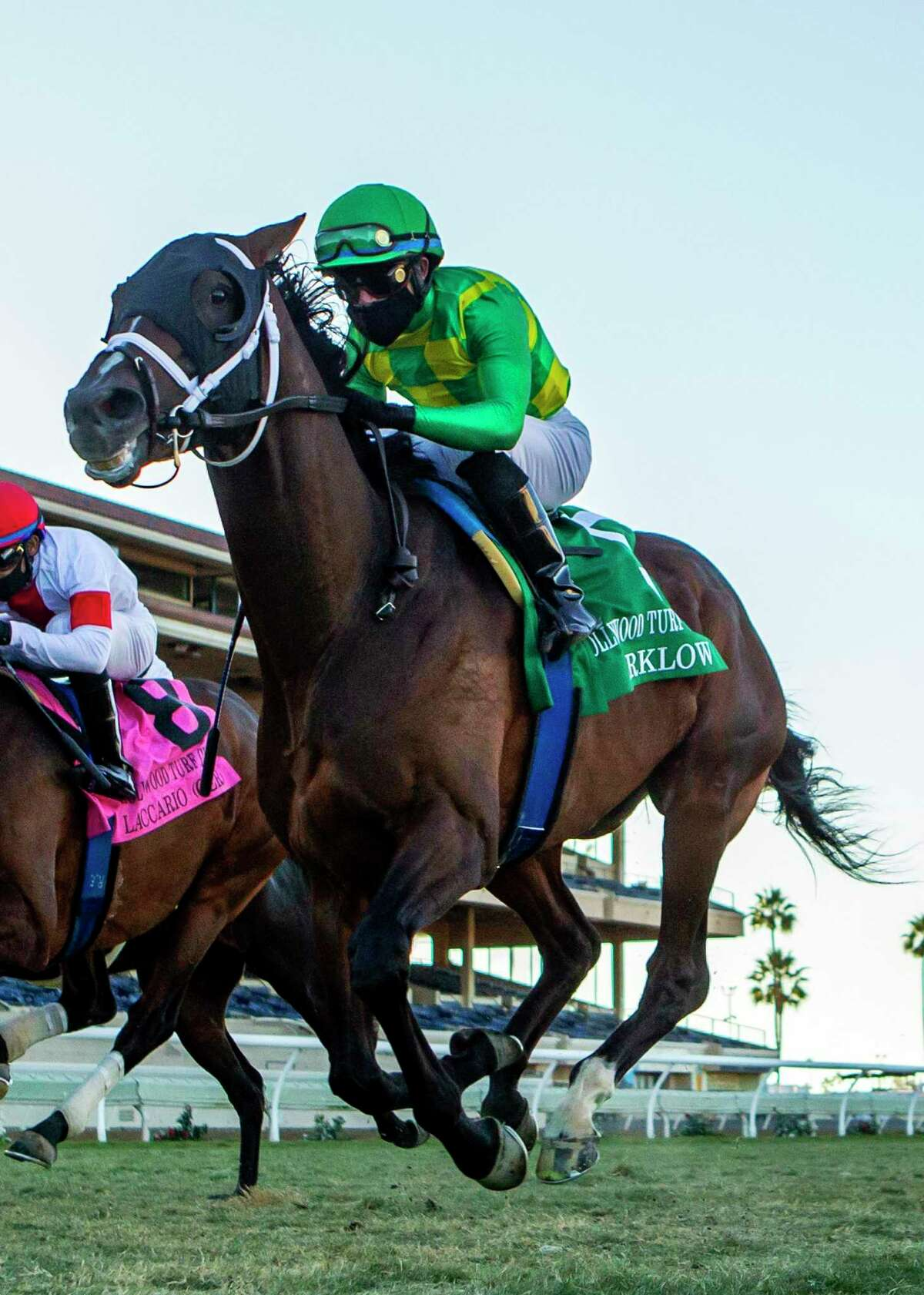 Arklow and jockey Joel Rosario win the Hollywood Turf Cup horse race on Friday in Del Mar, Calif.