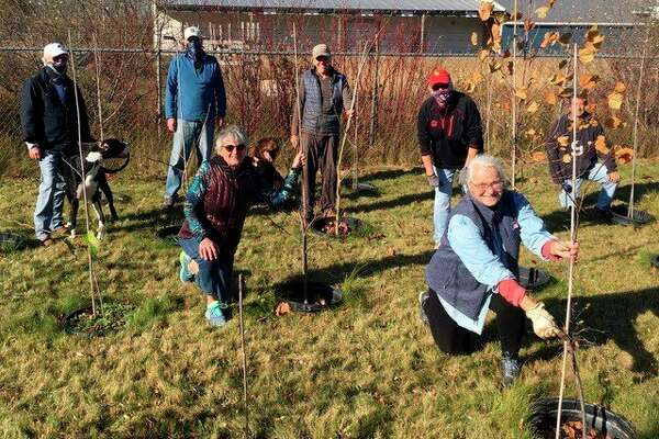 Members of the Frankfort Tree Board care for the city's nursery with the help of Jim Grabowski. (Courtesy Photo)