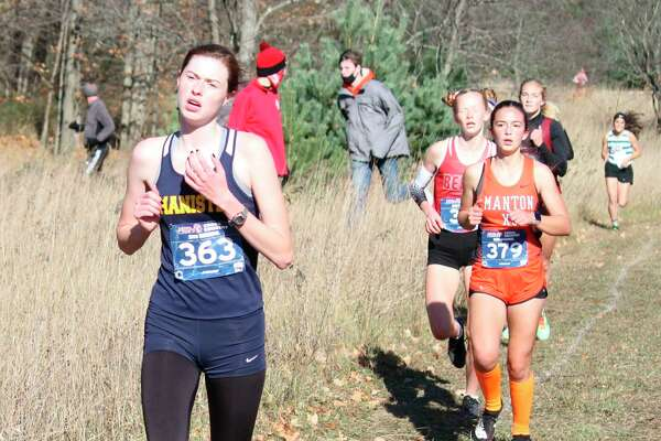 Manistee senior Olivia Holtgren was named first-team all-conference in the Lakes 8 this season. (News Advocate file photo)