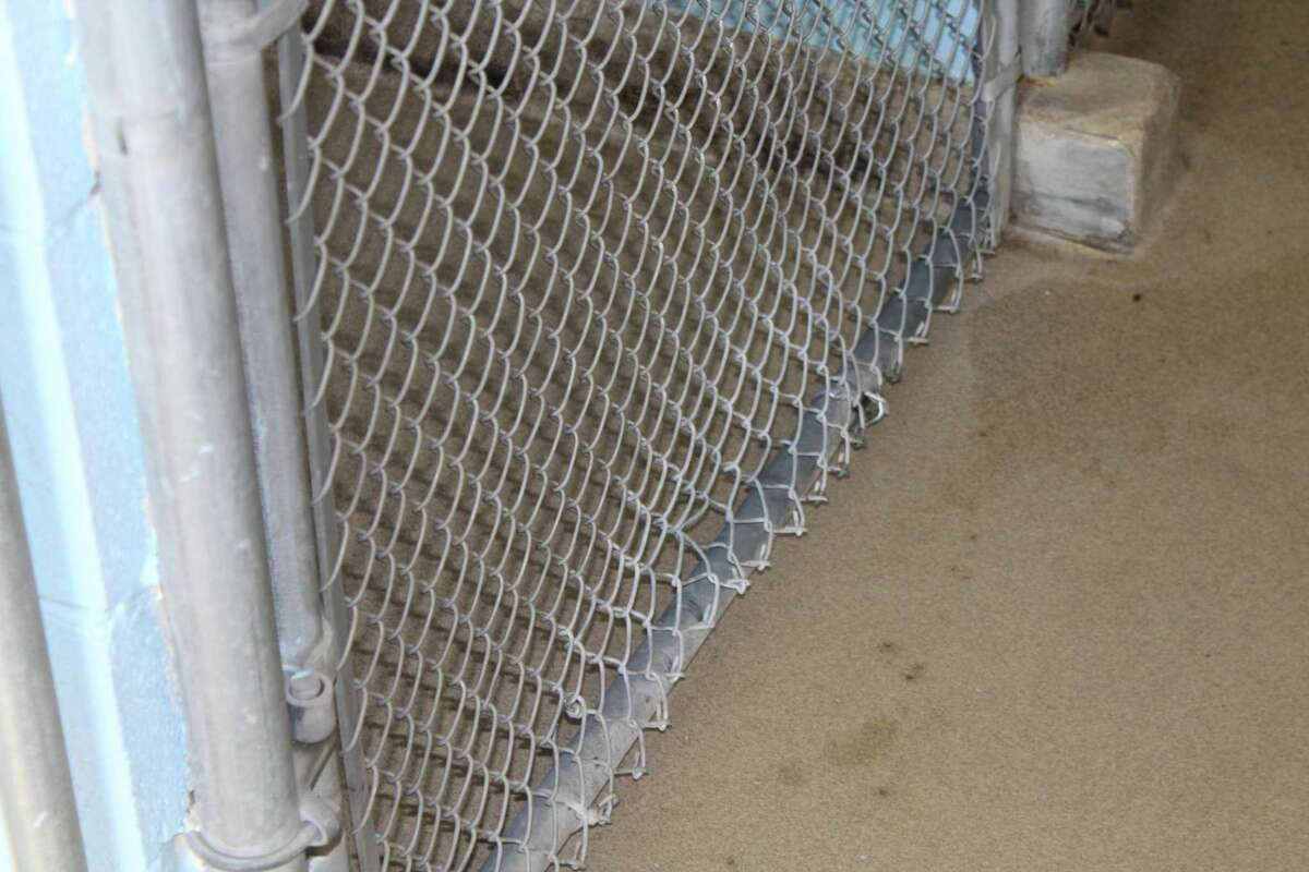 A bent cage on one of the seven runs inside the New Canaan Animal Control facility is among the reasons discussions of a new facility have begun. The current shelter is a former incinerator at the transfer station.