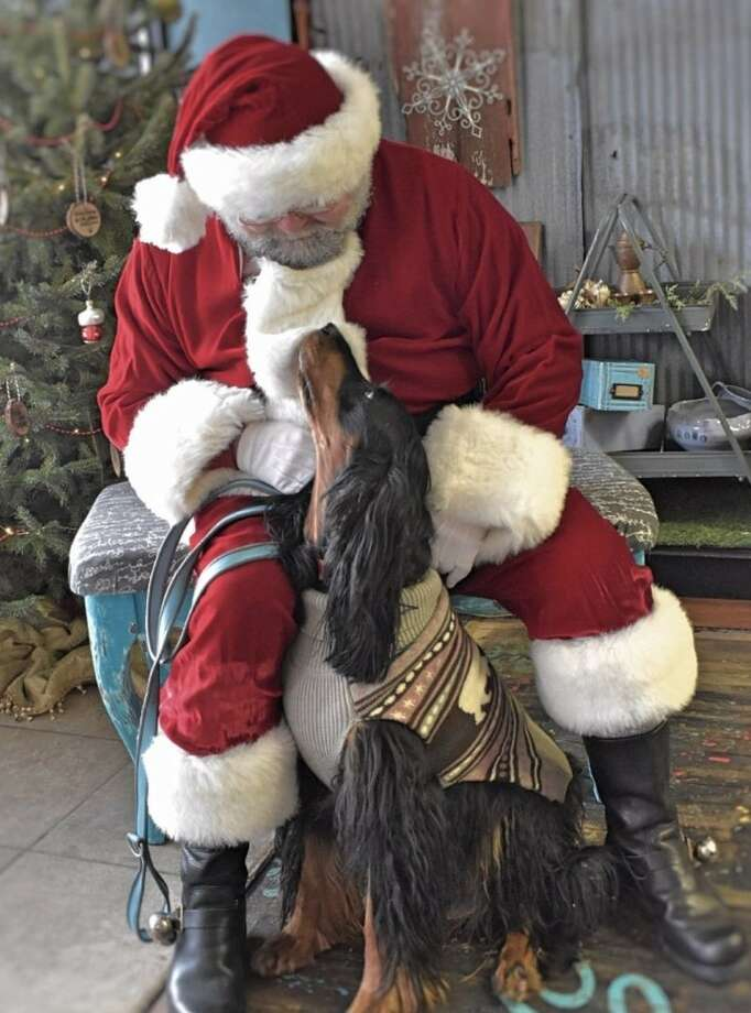 Pet Portraits with Santa is slated to be held on Dec. 6 and 13 in the outdoor area next to Yellow Dog Cafe in downtown Onekama. Photo: Courtesy Photo