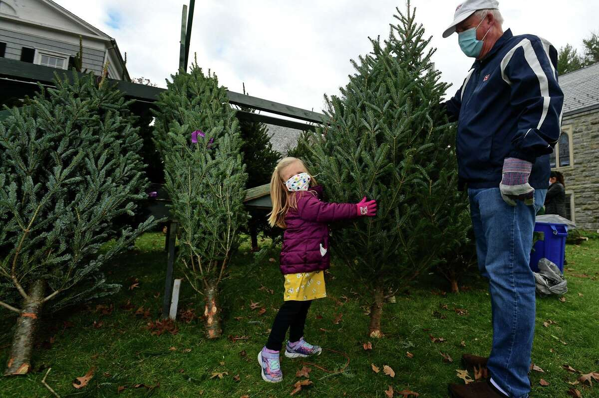 Three-year-old Everley Eads picks out a tree at The First Congregational Church of Greenwich Annual Tree & Wreath Sale Saturday, November 28, 2020, in Greenwich, Conn. The sale runs weekends beginning Saturday through Sunday, December 6 while supplies last. The sale features 500 fresh cut Fraser and Balsam fir trees from New Hampshire and more than 200 balsam wreaths and roping. All proceeds will benefit local charities including Kids in Crisis, Children's Learning Center, Inspirica, Mothers for Others, Pacific House (young adult program), and First Church Fund to Benefit New Covenant Center Soup Kitchen.