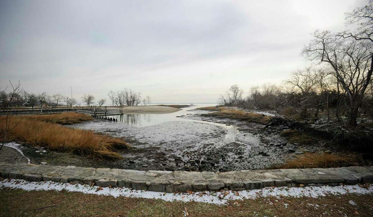 The inlet at the Cove Island Wildlife Sanctuary in Stamford on Dec. 21, 2019. The Connecticut Audubon Society's Birds of 2019, a list created each year to spur interest in conservation, because the state's bird population has fallen dramatically since 1970. Based on the reports of the society's many volunteers, the top birds of 2019 are the barred owl, sandhill crane and piping plover, but it also highlights many of the birds you find in the sanctuary.