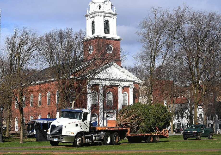 A replacement Christmas tree for the one felled during a recent storm is delivered to the New Haven Green Wednesday, December 2, 2020. Photo: Brian A. Pounds / Hearst Connecticut Media / Connecticut Post