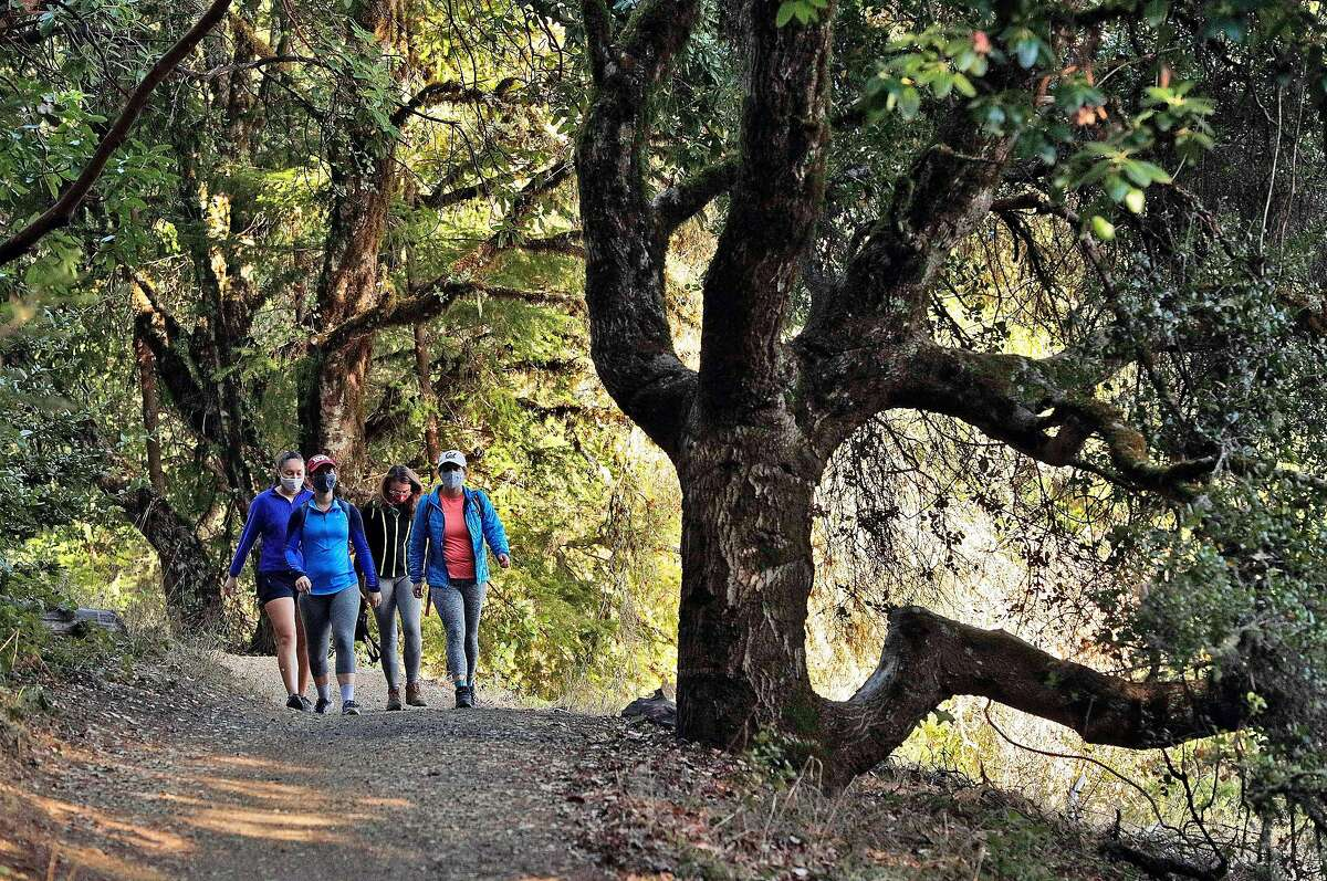 A group of women hikes on a trail out at El Corte de Madera Open Space and Preserve outside Woodside , Calif., on Wednesday, December 2, 2020. High winds buffeted the Bay Area over the weekend, prompting a rare December red flag warning set to last until 5 p.m. Monday, Dec. 7.