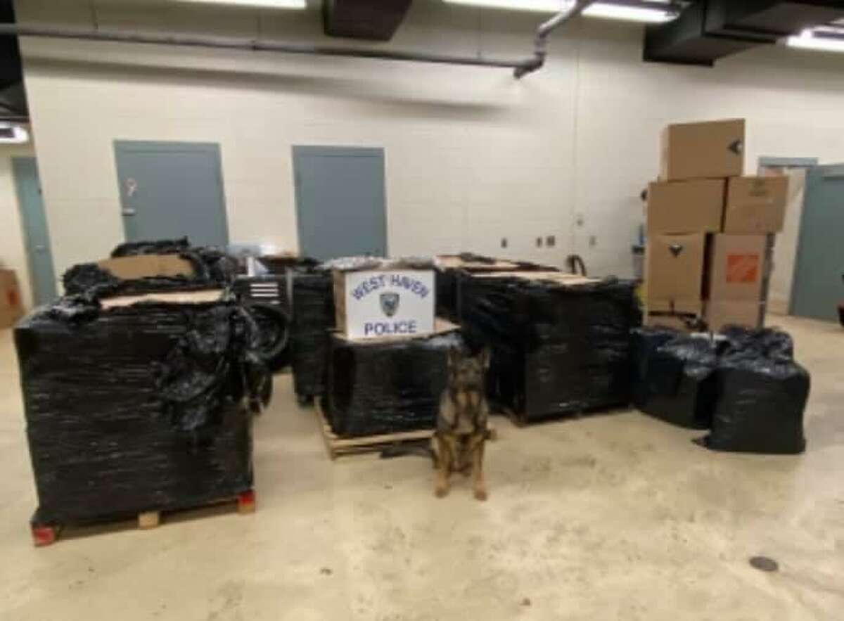 The marijuana police said was seized as part of Tuesday's bust.