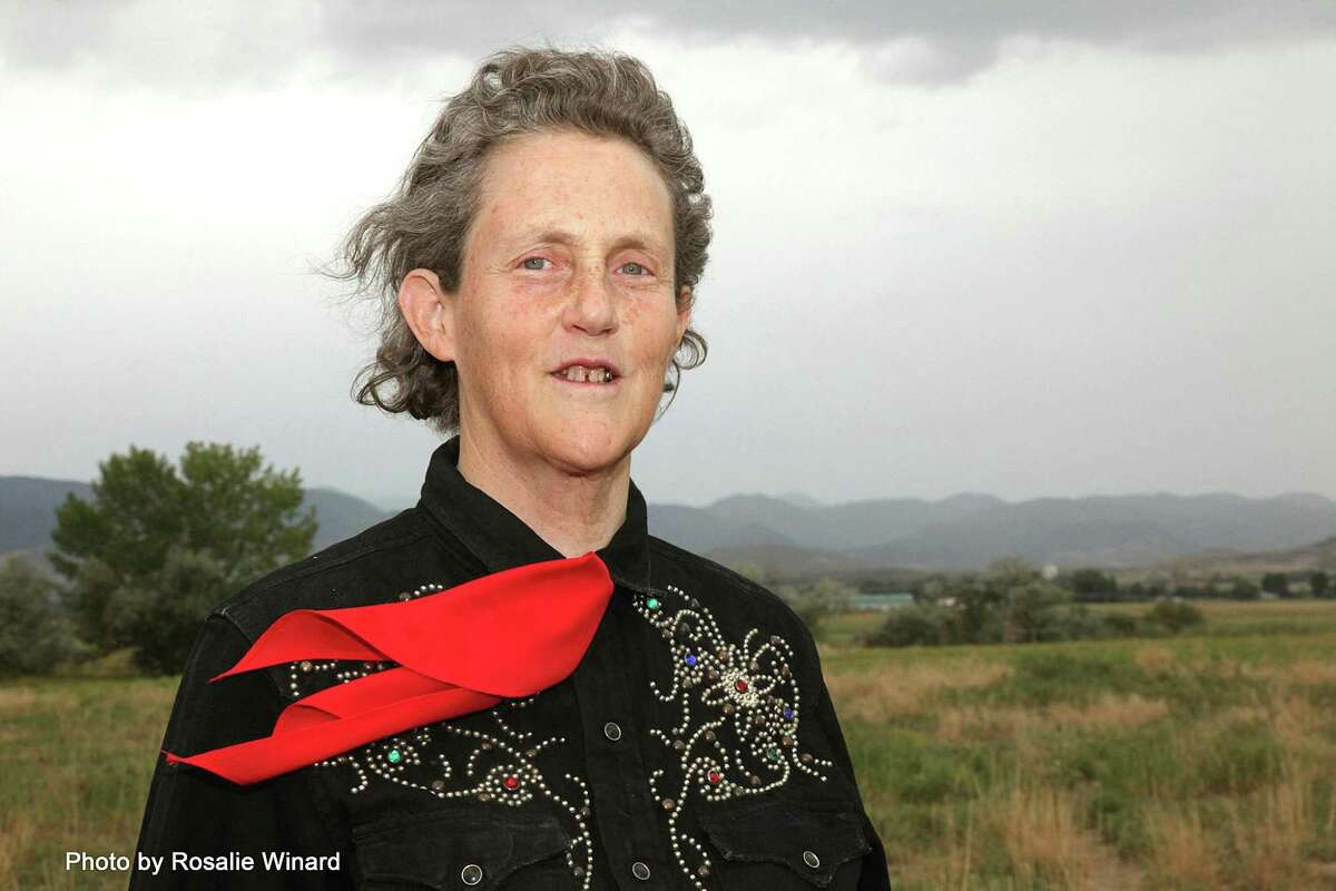 Colorado State University professor Temple Grandin, who has autism, has kept busy writing during the pandemic.