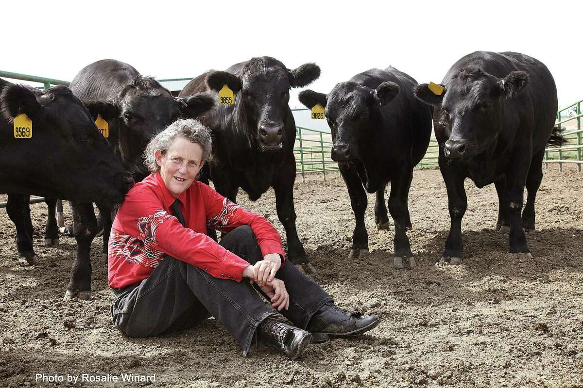 Autism advocate Temple Grandin is known for her work improving animal welfare at slaughterhouses.