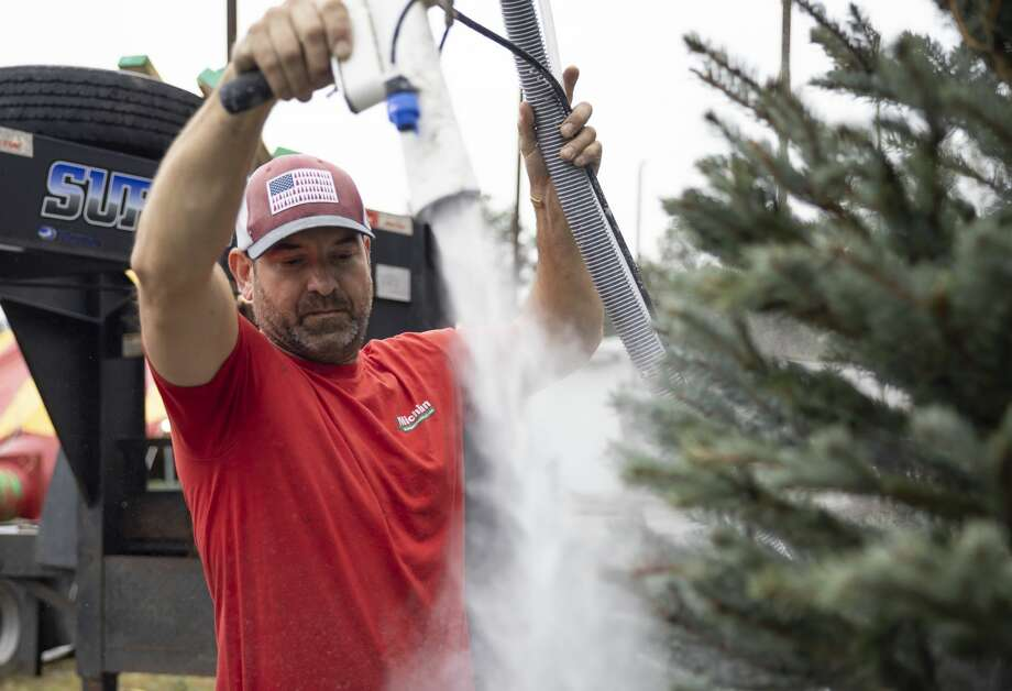 Matt Vandekerkhof, part-owner of Michigan Christmas Trees LLC, flocks a tree at the lot location off FM 2854 in Conroe, Wednesday, Dec. 2, 2020. There are lots based in Magnolia, Conroe and in Spring where customers can purchase a tree. Photo: Gustavo Huerta/Staff Photographer / 2020 © Houston Chronicle