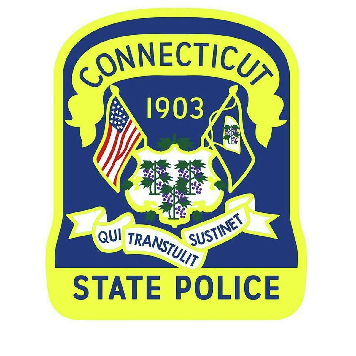 A 43-year-old Connecticut man was arrested Wednesday on eleven charges of failure to appear in court and one count of violation of a protective order. State Police said Michael Gramegna was arrested days after he removed his court-ordered ankle monitoring device and mailed it back to the Office of Probation.