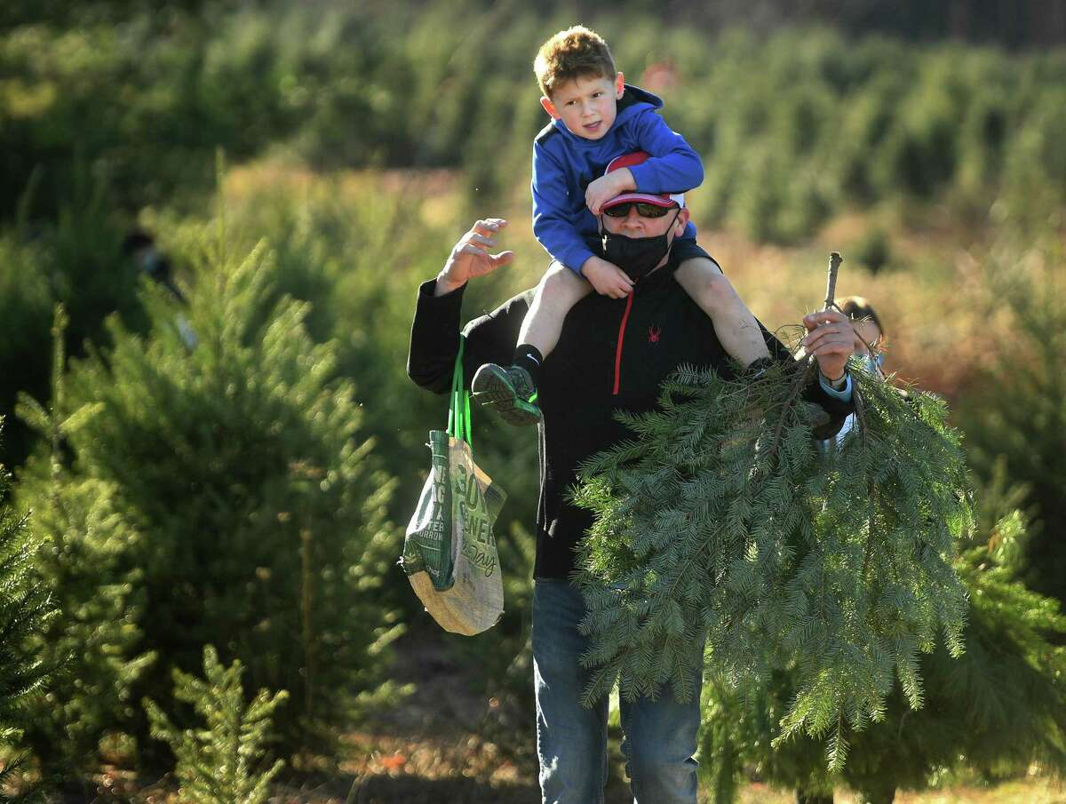 Jason Gooley, of Orange, gives a piggy-back ride to son Bryan, 6, after cutting their Christmas trees at Jones Tree Farm in Shelton on Sunday, Nov. 29.