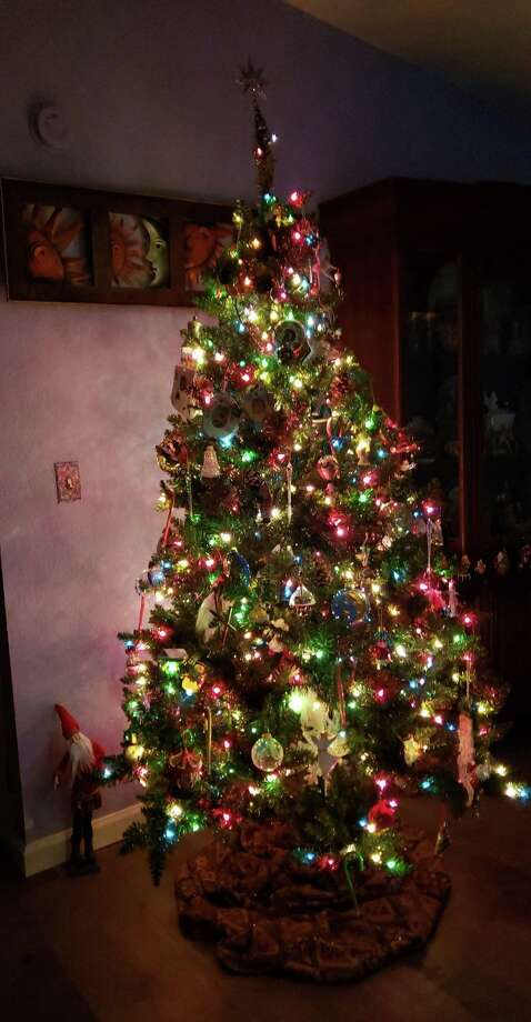 The Huron-Manistee National Forests are offering a free Christmas Tree tag to any fourth and fifth grade student with the Every Kid Outdoors pass. (File photo)