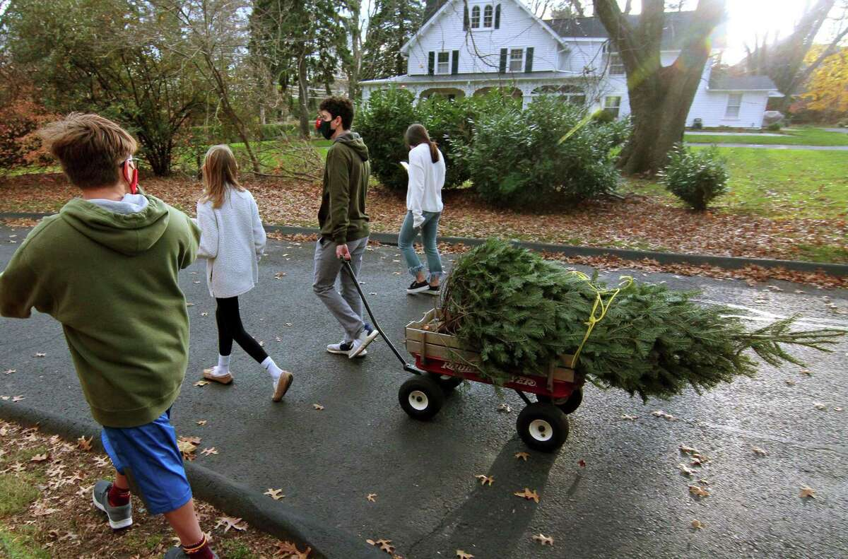 Kevin Gidez, 17, uses a wagon to pull the tree he just bought during Boy Scout Troop 82's 56th Annual Christmas Tree Sale at First Church Congregational in Fairfield, Conn., on Saturday Nov. 28, 2020. Walking with Gidez is his bother Brian, 9, left, sister Madelaine, 11, and friend Erin McHugh, 17, in back at right. The sale is from Thursday to Sundays until sold out.