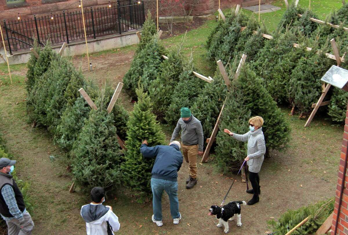 Bill and Martha Spiegel along with their dog Charlie look for the perfect tree during Boy Scout Troop 82's 56th Annual Christmas Tree Sale at First Church Congregational in Fairfield, Conn., on Saturday Nov. 28, 2020. Helping the Spiegel's in their search is Boy Scout Henry Burgess. The tree sale goes from each Thursday through Sunday until sold out.