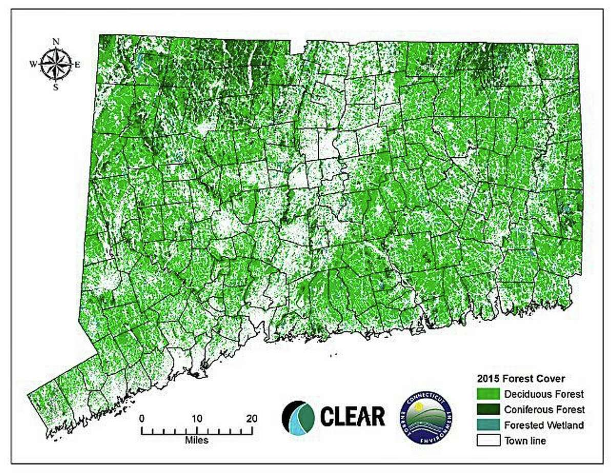 14 Connecticut is the 14th most forested state in the United States, according to the U.S. Department of Agriculture Forest Service.