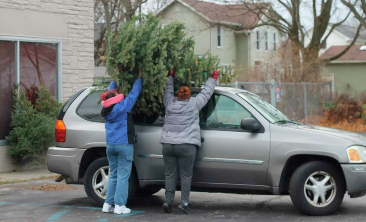 A family loads one of the free Christmas trees available at the Manistee County FiveCAP office Saturday afternoon. The trees were donated byChris Frederick, owner of Blue Earth Tree Farm in Ludington. (Kyle Kotecki/News Advocate)