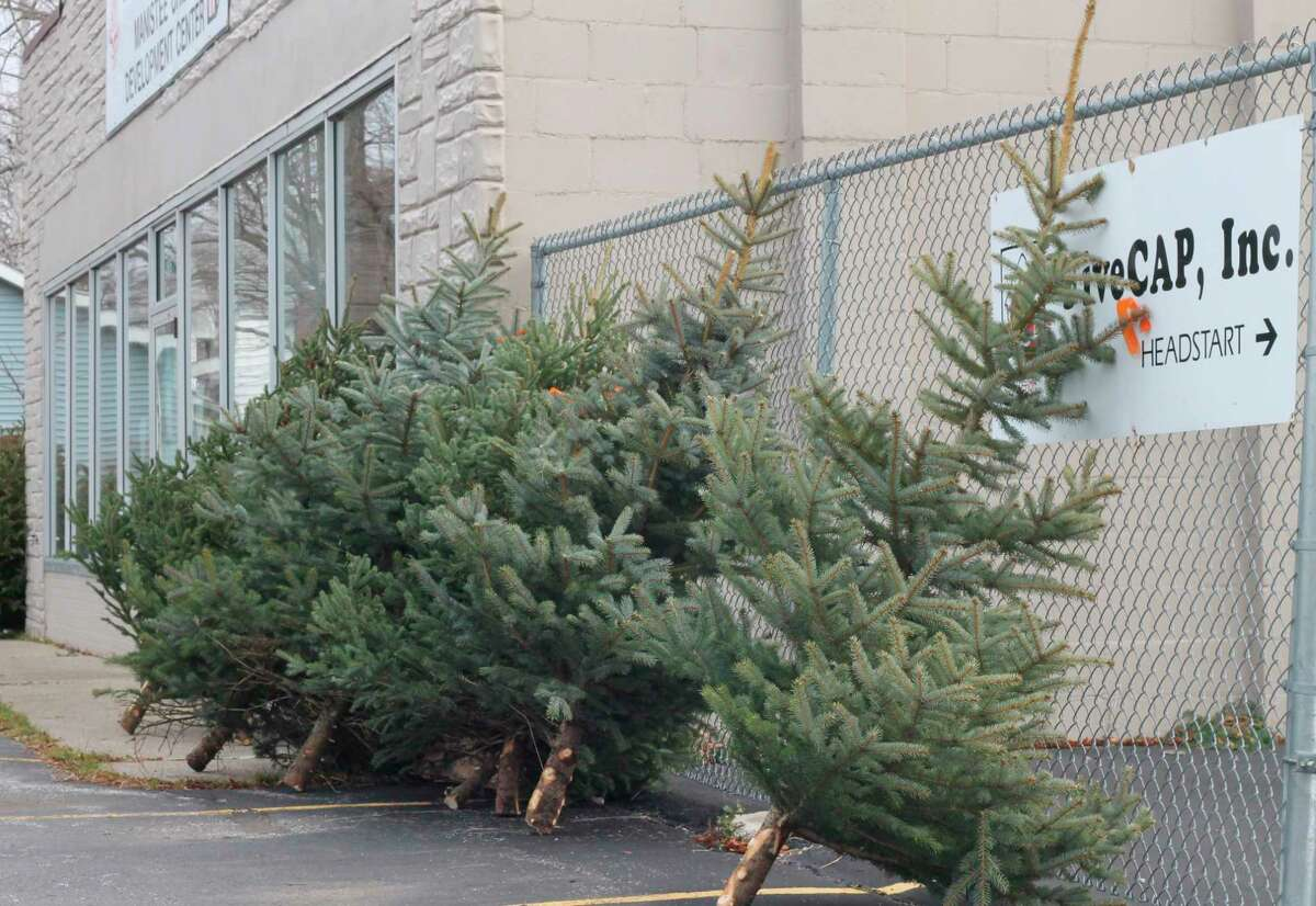 FiveCAP, thanks to the generosity of Chris Frederick, owner of Blue Earth Tree Farm in Ludington, saw to it that families going through a challenging time still had a tree put in their homesby offering Christmas treesat the Manistee County FiveCAP office Saturday afternoon, free of charge, on a first-come, first-serve basis. (Kyle Kotecki/News Advocate)