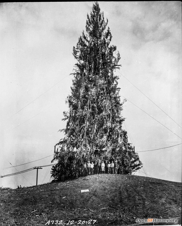 The Examiner Christmas tree, Twin Peaks, San Francisco, 1927.