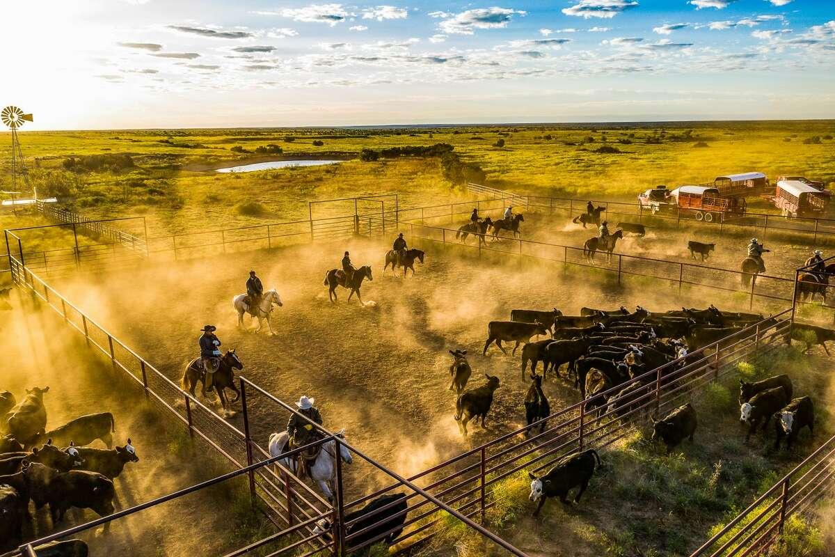 6666 Ranch   $192 million   142,372 acres