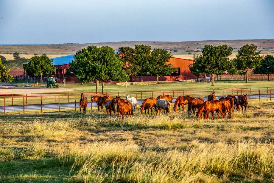 6666 Ranch | $192 million | 142,372 acres Photo: Chas S. Middleton And Son
