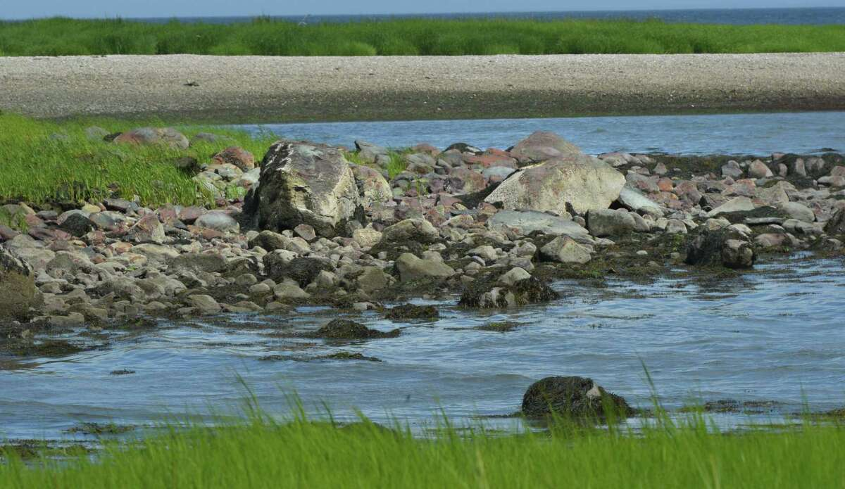 Chimon Island on Tuesday july 24, 2018 in Norwalk Conn. Chimon, the largest of the Norwalk islands is part of of the Stewart B. McKinney National Wildlife Refuge and is a nesting habitat for birds.