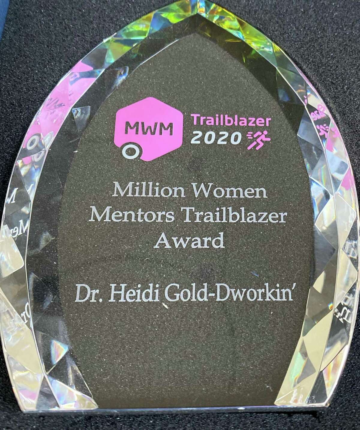A national award that was received by Dr. Heidi Gold-Dworkin for her work in STEM.