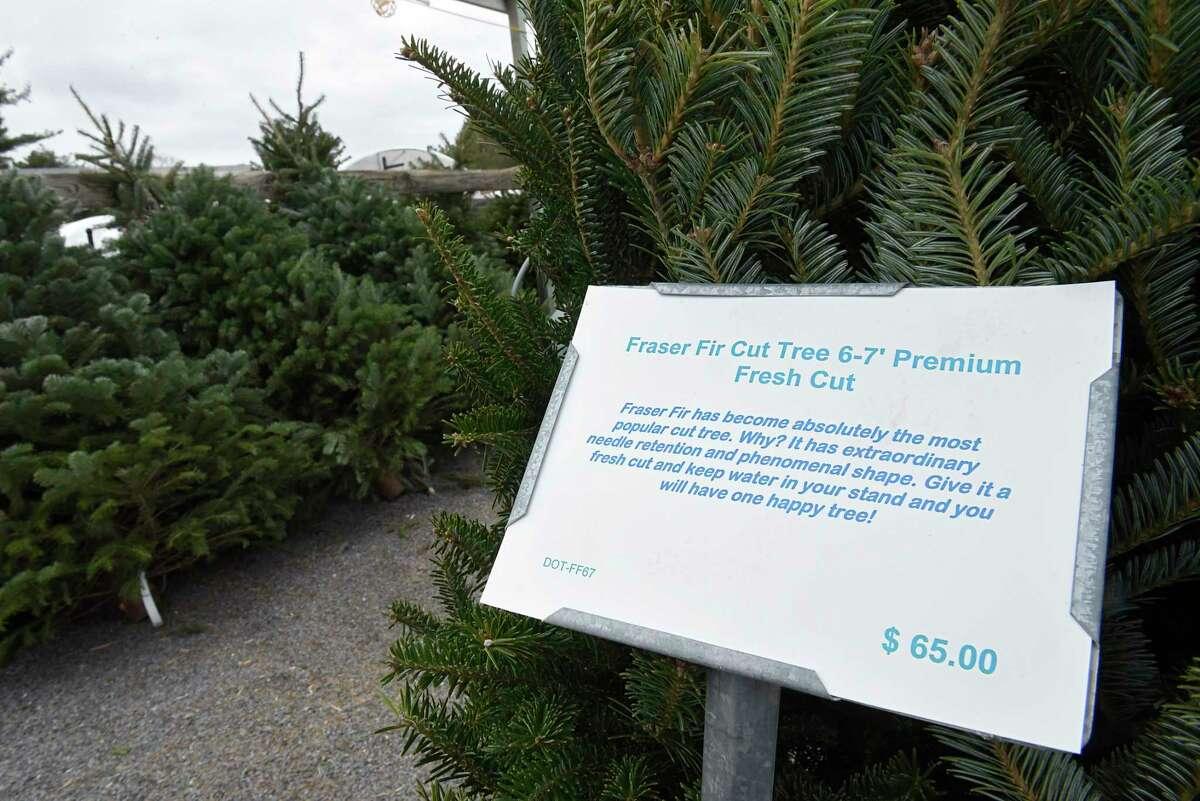 Christmas trees are displayed at Faddegon's Nursery on Tuesday, Dec. 8, 2020 in Latham, N.Y. (Lori Van Buren/Times Union)