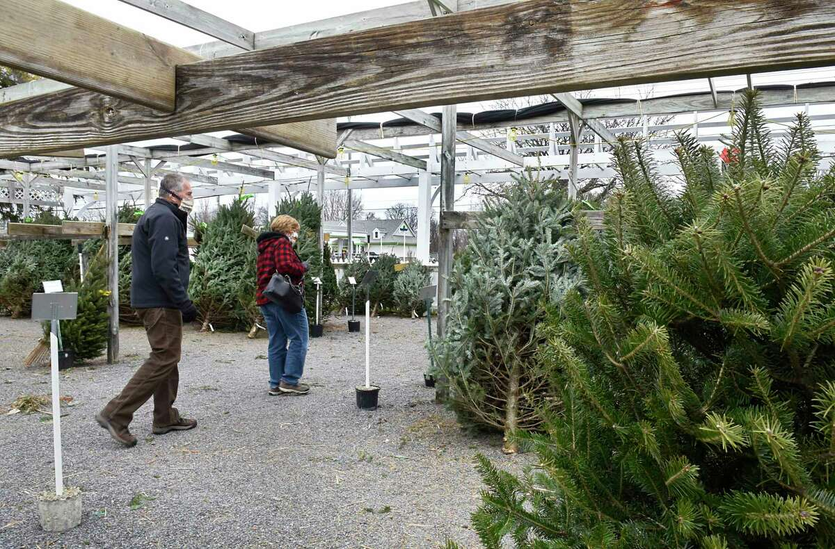 Tom and Deb Carey of Schenectady shop for a Christmas tree at Faddegon's Nursery on Tuesday, Dec. 8, 2020 in Latham, N.Y. (Lori Van Buren/Times Union)