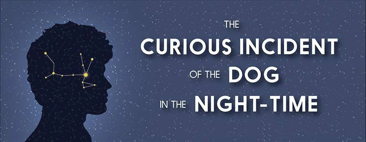 Thesis Theater Production: The Curious Incident of the Dog in the Night-Time, will be presented Dec. 11-12 online.