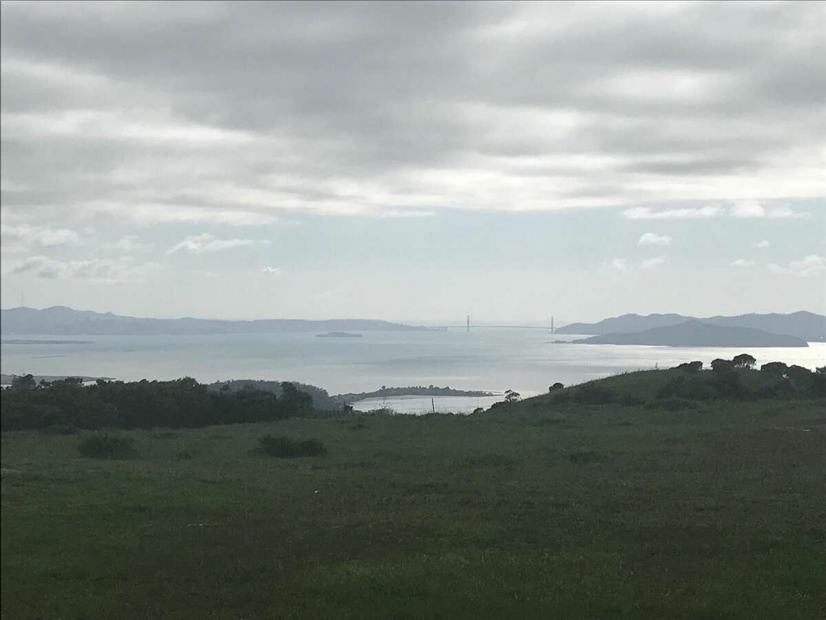A view of San Francisco Bay from the Conlon Trail in Wildcat Canyon in Richmond, Calif.