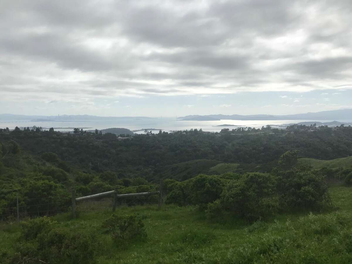 The view from the Nimitz Trail in Wildcat Canyon in Richmond, Calif.