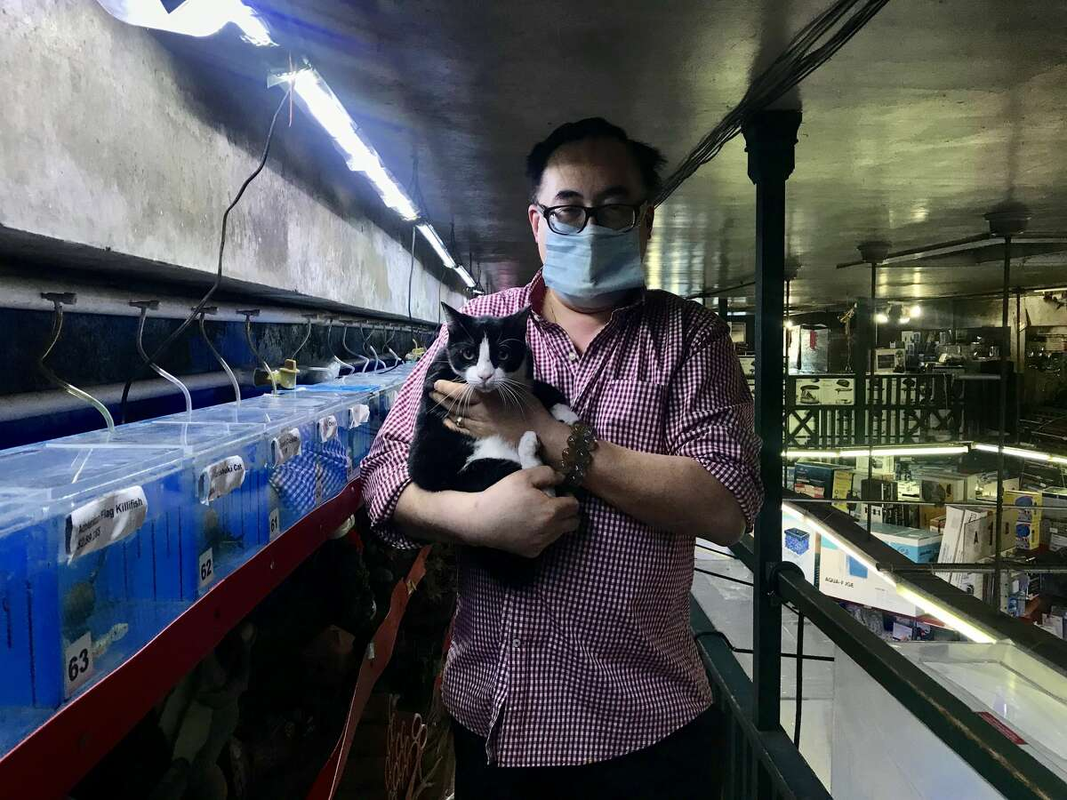 David Cheung, the owner of 6th Avenue Aquarium, poses for a photo with Rascal.