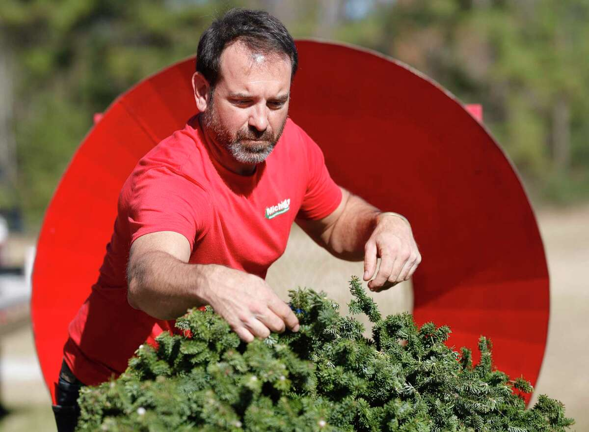 """Matt Vandekerkhof, co-owner of Michigan Christmas Trees LLC, prepares a Christmas tree for a customer at his business along FM 2854, Wednesday, Dec. 9, 2020, in Conroe. Vandekerkhof, who travels from his home in Traverse City, Michigan, to sell Michigan-grown tress in Montgomery County, said the pandemic has lead some differences this years. """"With COVID, less people are traveling so people are buying trees that don't typically buy a tree, or I've had a lot of customers buy a bigger tree than they normally do, since they're going to be home,"""" he said."""
