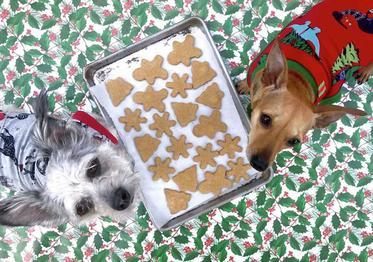 Homemade dog biscuits are the perfect way to to thank our puppies for keeping us company during the pandemic this holiday season. Paul Stephen's dogs, Frankie (left) and Betsy certainly approve.