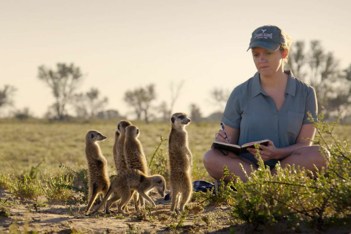 Ecologist Kirsty MacLeod with a group of meerkats in the Kalahari Desert of South Africa in episode 1 (