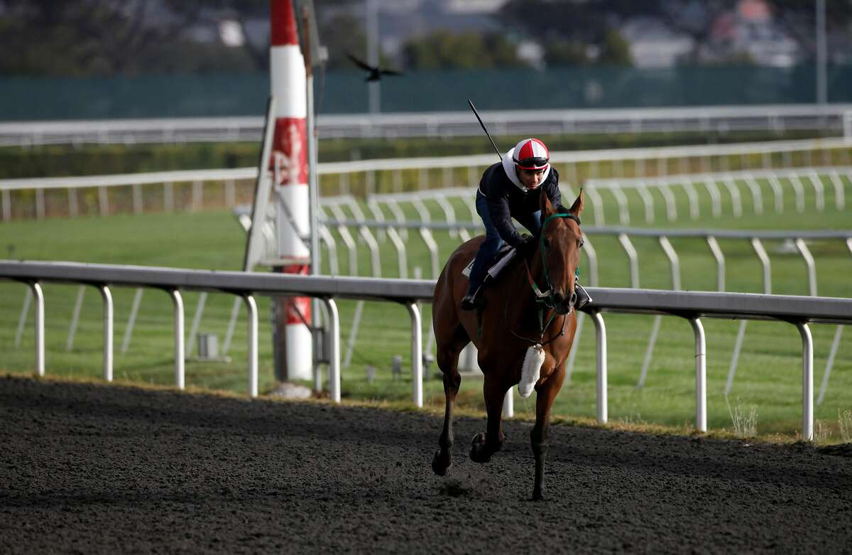 Jockey Ricardo Gonzalez exercises mare Rising Above in August 2013 at Golden Gate Fields in Berkeley.