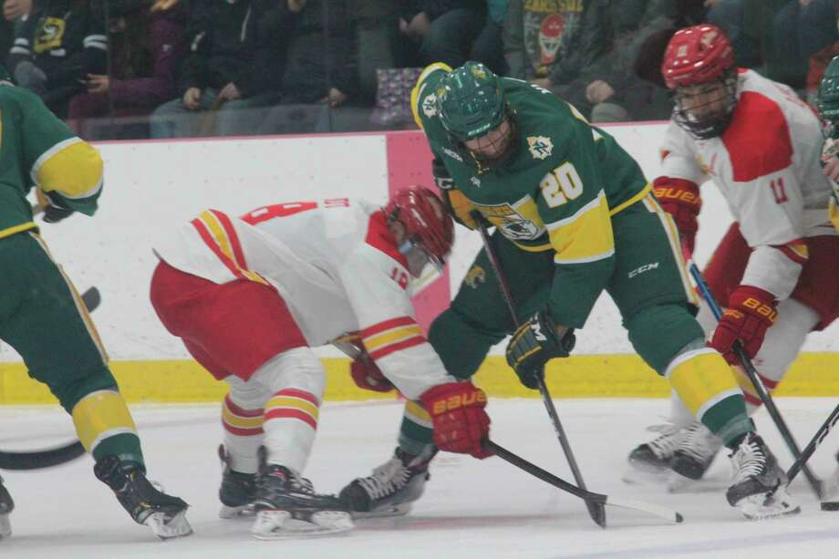 Ferris' hockey team opened the season on Friday with a 3-2 loss to Bowling Green. (Pioneer file photo)