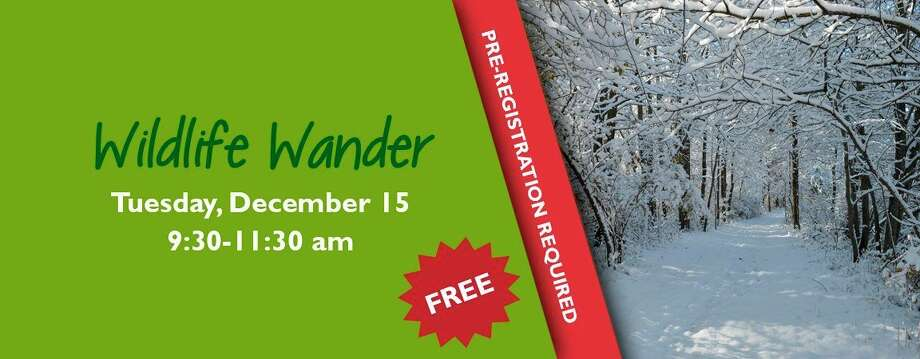Tuesday, Dec. 15: Wildlife Wander is scheduled for 9:30 to 11 a.m. at the Chippewa Nature Center in Midland. (Graphic/Chippewa Nature Center Facebook)