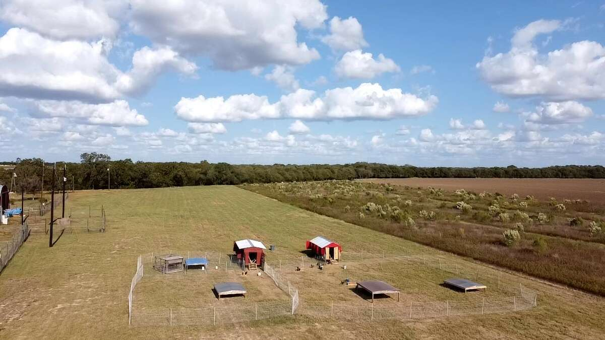 Cielo Vista Farm, located off Interstate 10 on Weir Road, is about 22 miles from downtown San Antonio and 15 minutes from downtown Cibolo.