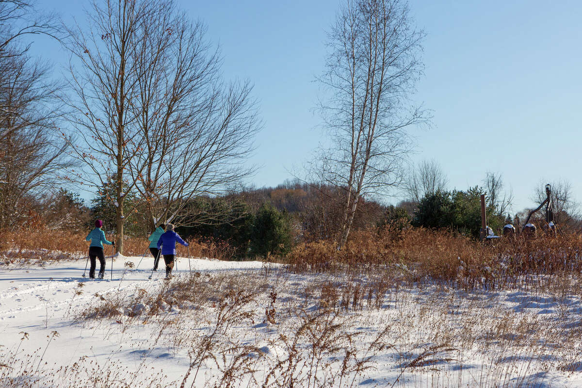 Check out art while Nordic skiing at sculpture and architecture park Art Omi in Ghent, NY.