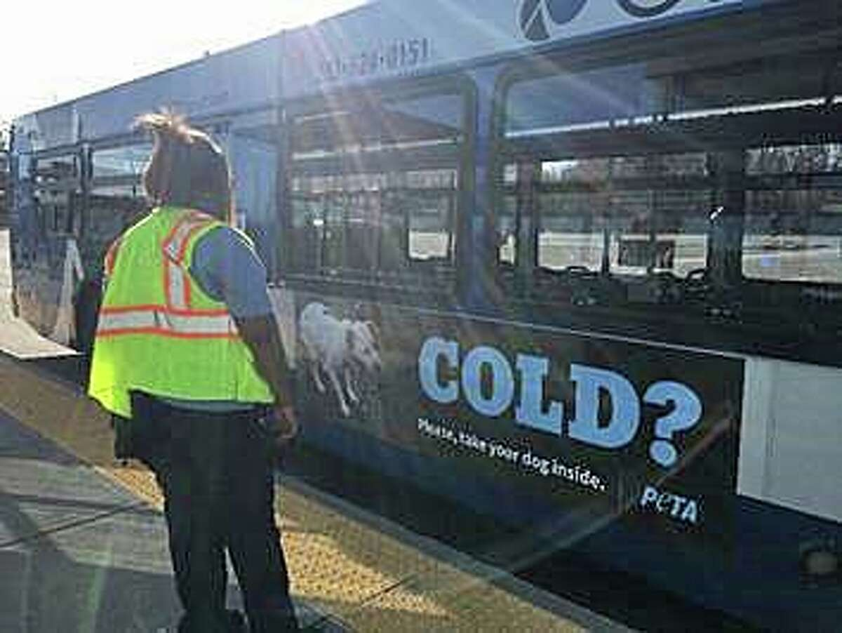 With Connecticut under a winter storm watch in advance of the first major snowstorm of the season, PETA is alerting dog owners of the dangers of leaving dogs outside. Ads are now running on buses in New Haven and Hartford and on a billboard on I-95 north near exit 43 in West Haven.